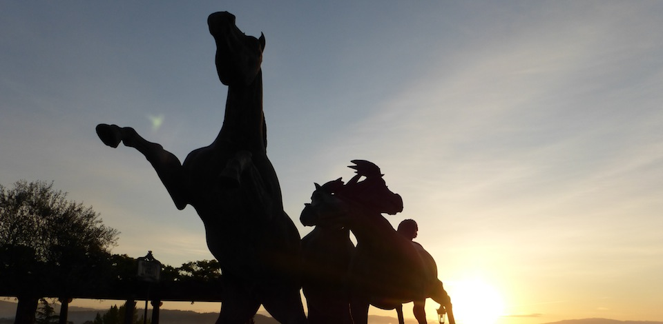 Pferde im Sonanaufgang