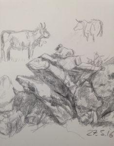 Steine Zeichnung