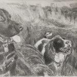 Zeichnung Hunde im Grass